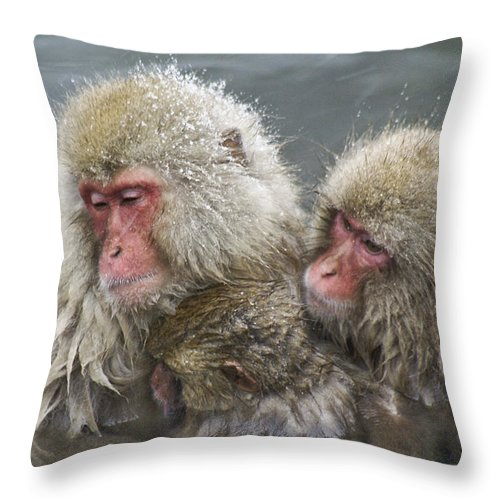 Snow Monkey Throw Pillow featuring the photograph Snuggling Snow Monkeys by Michele Burgess