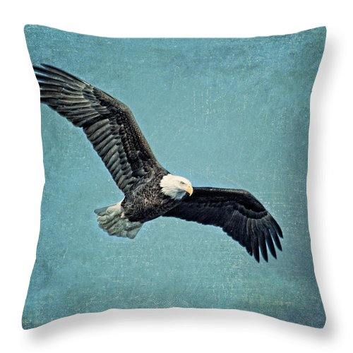 Bald Eagle Throw Pillow featuring the photograph Soaring Bald Eagle by Al Mueller