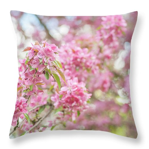 Jenny Rainbow Fine Art Photography Throw Pillow featuring the photograph Spring Lightness by Jenny Rainbow