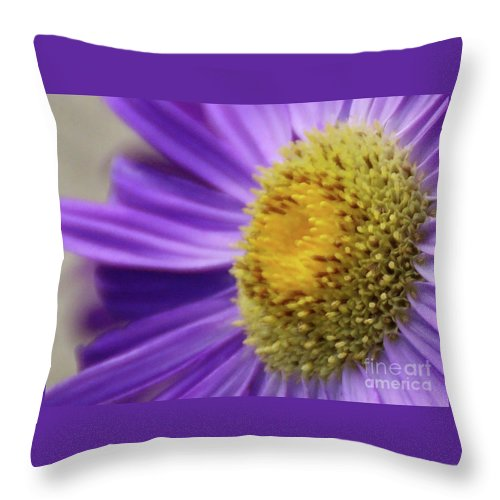 Flower Throw Pillow featuring the photograph Springtime by Linda Shafer