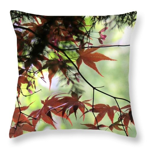 Summer. Leaves. Garden. Field. Spring. Flora. Countryside. Landscape. Flowers. Tree. Throw Pillow featuring the photograph Summer Xxi by Nicholas Rainsford