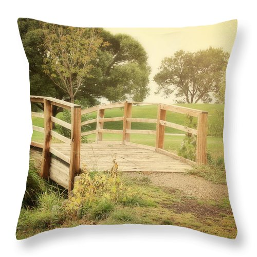 Throw Pillow featuring the photograph Sunday Stroll by Sylvia Coomes