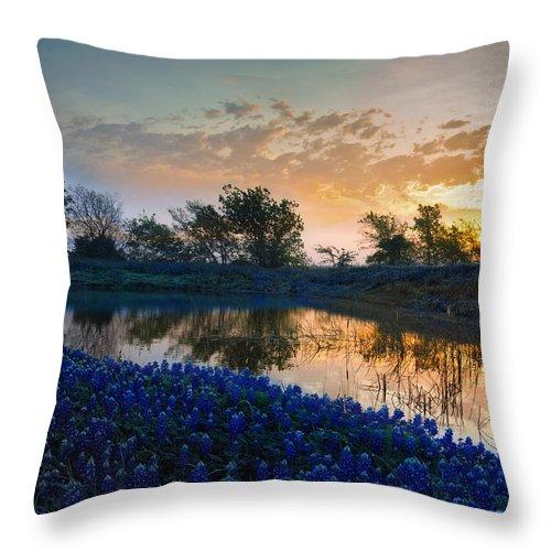 Bluebonnets Throw Pillow featuring the photograph Texas Bluebonnets by Mark Alder