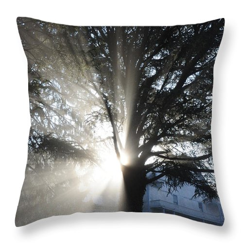 Nature Throw Pillow featuring the photograph The Abode Of Gladness by David Halperin