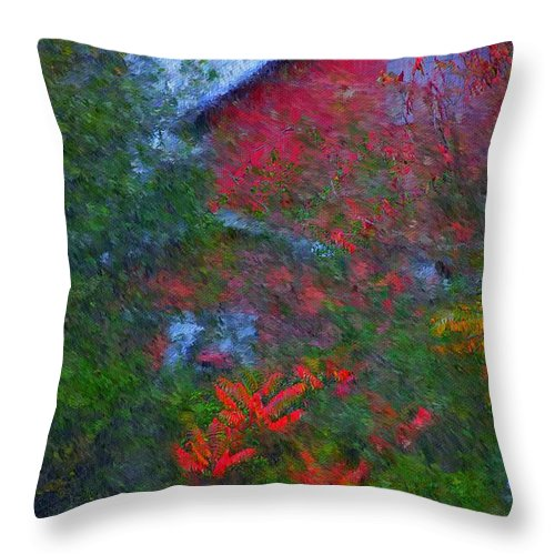 Digital Photo Throw Pillow featuring the photograph The Barn by David Lane