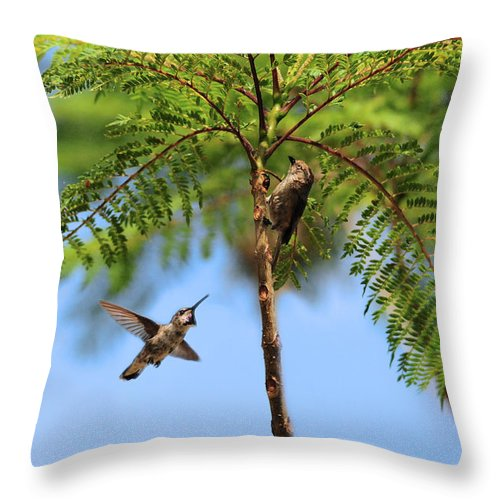 Challenge Throw Pillow featuring the photograph The Challenge by Lynn Bauer