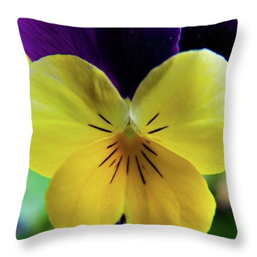 Flowers Throw Pillow featuring the photograph The Face Of A Pansy by Brenda Jacobs