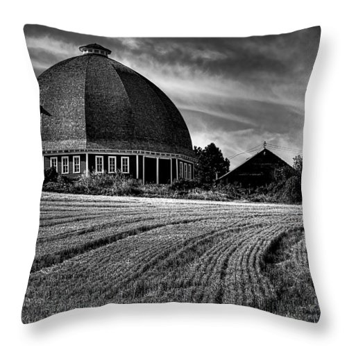 Landscape Throw Pillow featuring the photograph The Leonard Barn by David Patterson