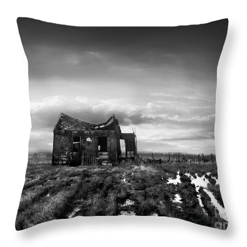 Architecture Throw Pillow featuring the photograph The Shack by Dana DiPasquale