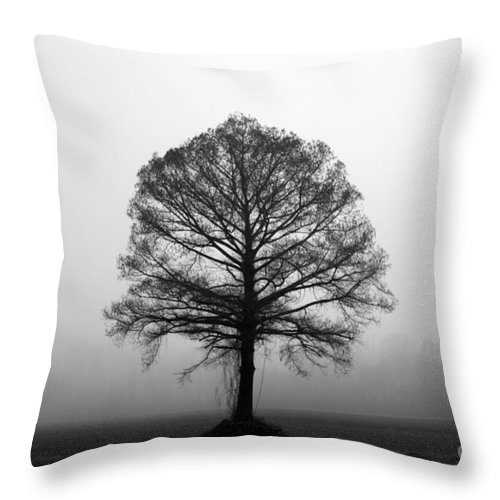 Tree Throw Pillow featuring the photograph The Tree by Amanda Barcon