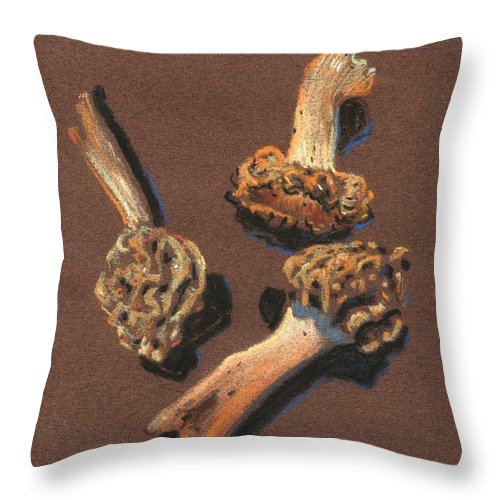 Morel Mushrooms Throw Pillow featuring the drawing Three Morels by Donald Maier