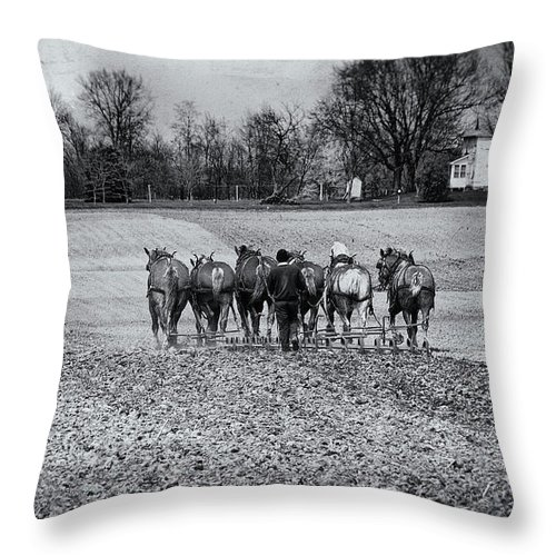 Agriculture Throw Pillow featuring the photograph Tilling The Fields by Tom Mc Nemar