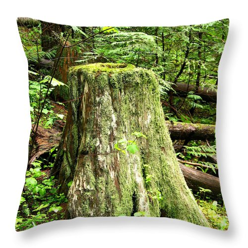 Moss Throw Pillow featuring the photograph Transition by Idaho Scenic Images Linda Lantzy