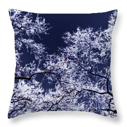 Tree Throw Pillow featuring the photograph Tree Fantasy 17 by Lee Santa