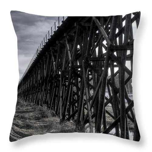 Black And White Throw Pillow featuring the photograph Tressel From The East by David Patterson