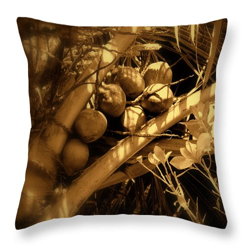 Coconuts Throw Pillow featuring the photograph Tropical Dreams by Susanne Van Hulst