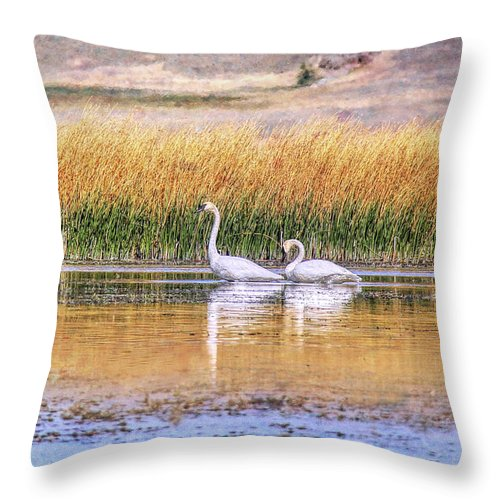 Trumpeter Swan Throw Pillow featuring the photograph Tranquil Trumpeter Swans by Jennie Marie Schell