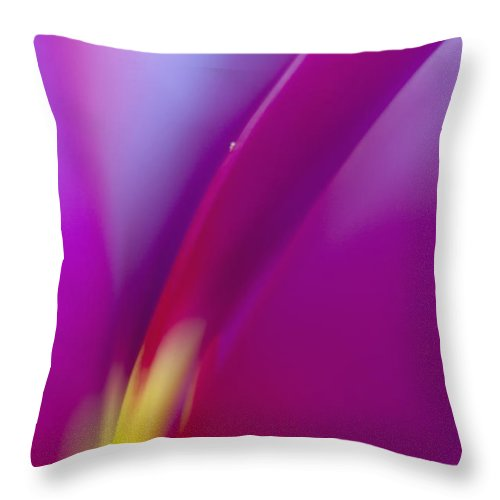 Tulip Throw Pillow featuring the photograph Tulip by Silke Magino