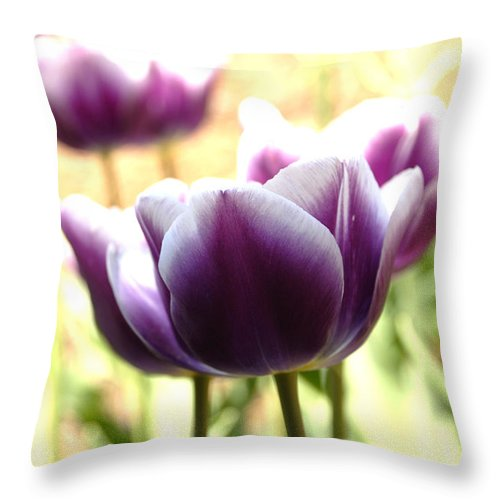 Tulips Throw Pillow featuring the photograph Tulips by Jessica Wakefield