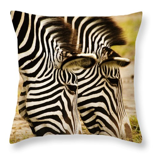 Africa Throw Pillow featuring the photograph Twins In Stripes by Michele Burgess
