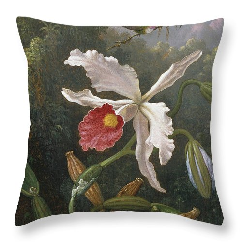 Martin Throw Pillow featuring the painting Two Hummingbirds Above a White Orchid by Martin Johnson Heade