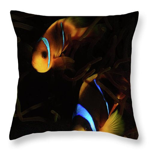 Underwater Throw Pillow featuring the photograph Underwater Photography by Hagai Nativ