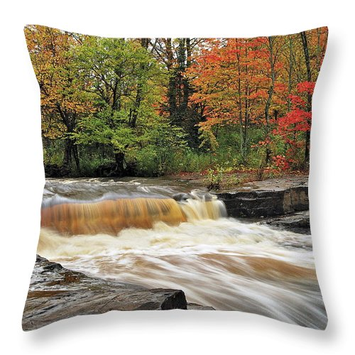 Michigan Throw Pillow featuring the photograph Unnamed Falls by Michael Peychich