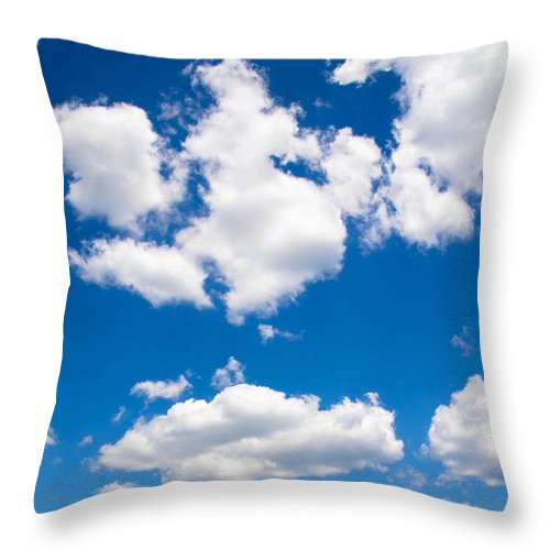 Nature Throw Pillow featuring the photograph Up In The Sky by Andrea Anderegg