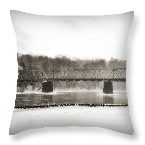 Washington's Crossing Throw Pillow featuring the photograph Washingtons Crossing Bridge by Bill Cannon