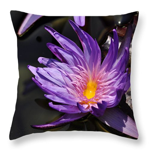 Clay Throw Pillow featuring the photograph Water Floral by Clayton Bruster