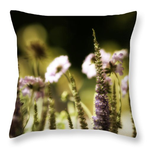 Wildflowers Throw Pillow featuring the photograph Wild And Free by Bonnie Bruno