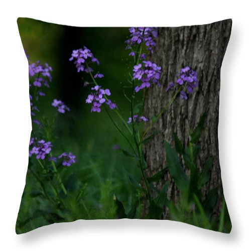 Throw Pillow featuring the photograph Wildflowers by Carol Turner