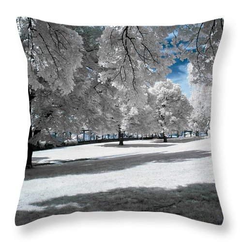 Winter Throw Pillow featuring the photograph Winter by FL collection