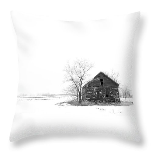 Landscape Throw Pillow featuring the photograph Winter In Pulaski by M Bubba Blume