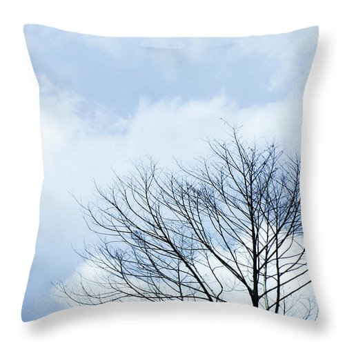 Winter Fall White Sky Throw Pillow featuring the photograph Winter Tree by Adelista J