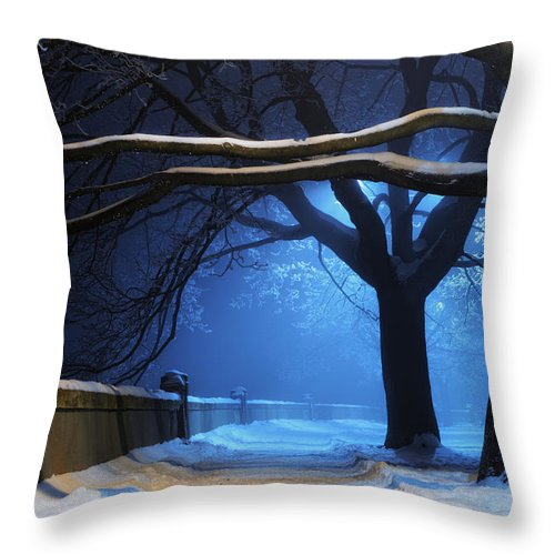 Winter Throw Pillow featuring the digital art Winter by Zia Low
