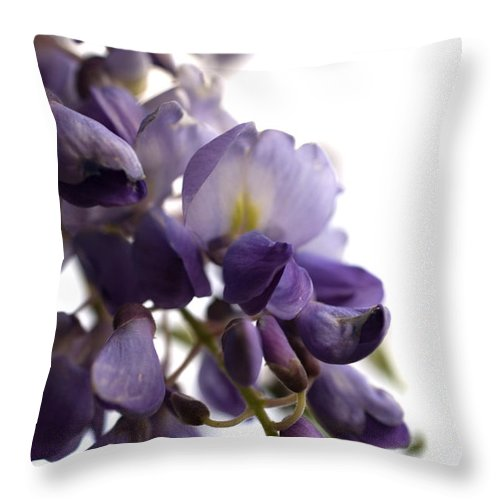 Wisteria Throw Pillow featuring the photograph Wisteria by Jessica Wakefield