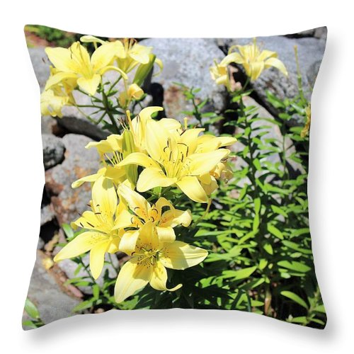 Day Lillies Throw Pillow featuring the drawing Yellow Day Lillies by Paul Meinerth