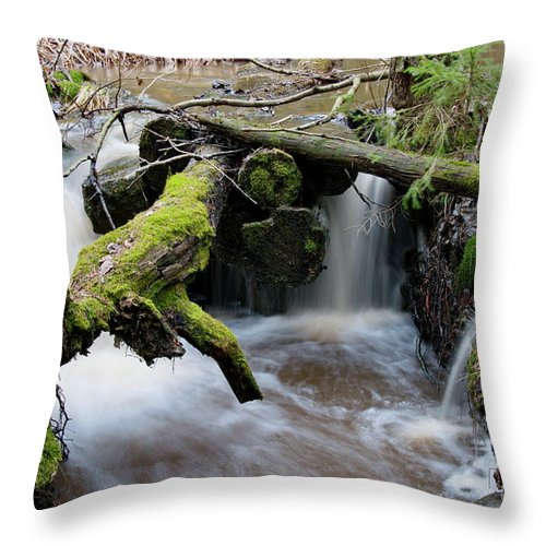Forest Creek Throw Pillow featuring the photograph Rapids by Esko Lindell