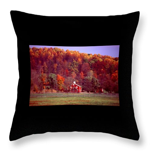 Autumn Throw Pillow featuring the photograph 102701-16 by Mike Davis
