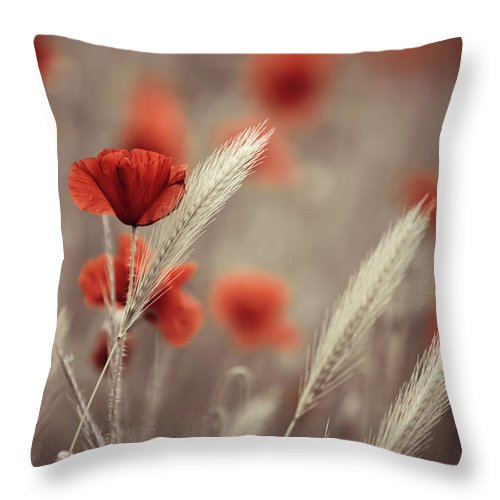 Poppy Throw Pillow featuring the photograph Summer Poppy Meadow by Nailia Schwarz