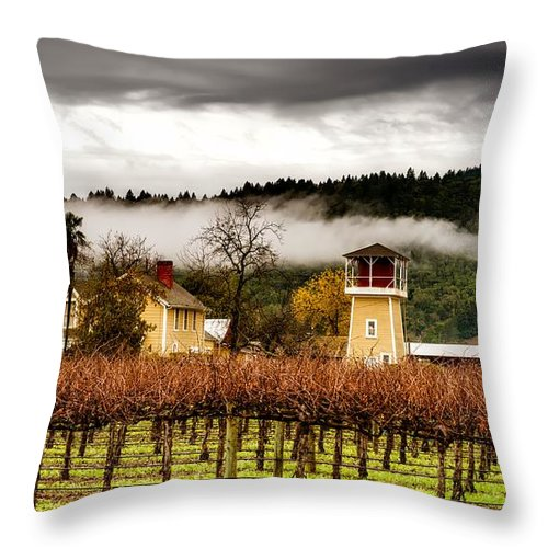 Napa Valley Throw Pillow featuring the photograph Napa Valley Vineyard by Mountain Dreams