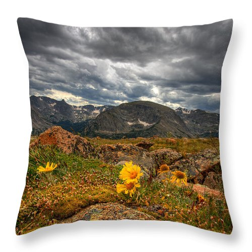 Clouds Throw Pillow featuring the photograph 12000 Foot Flower by Peter Tellone