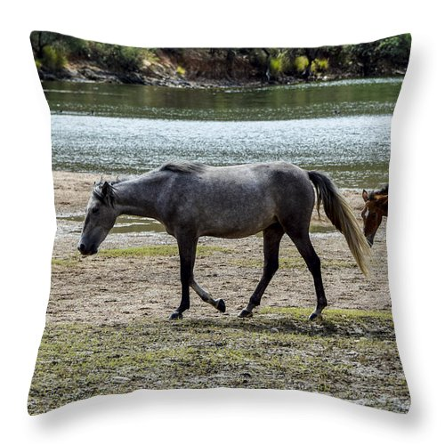 Horse Throw Pillow featuring the photograph Wild Mustangs by Marit Runyon