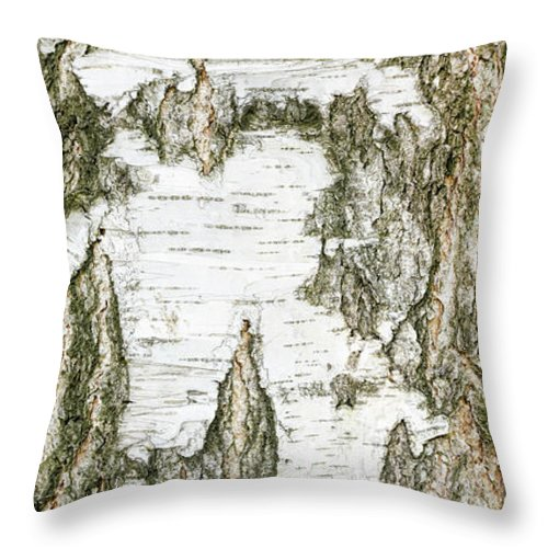Abstract Throw Pillow featuring the photograph Detail Of Brich Bark Texture by Alain De Maximy