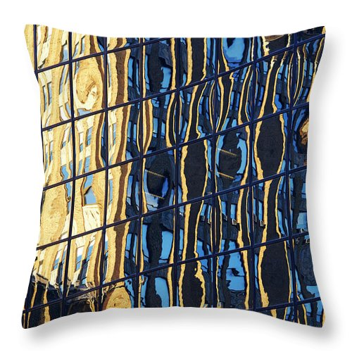 Abstract Throw Pillow featuring the photograph Abstract Reflection by Tony Cordoza