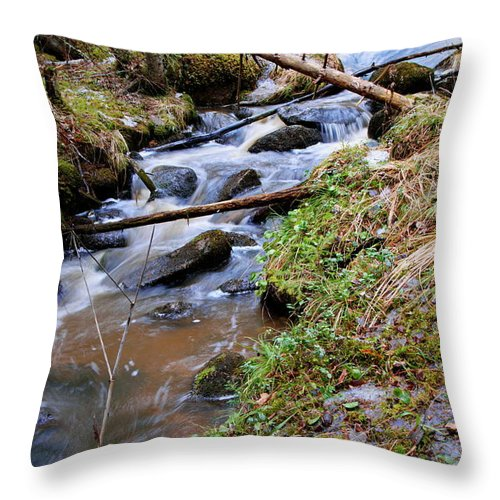 Creek Throw Pillow featuring the photograph Rapids by Esko Lindell