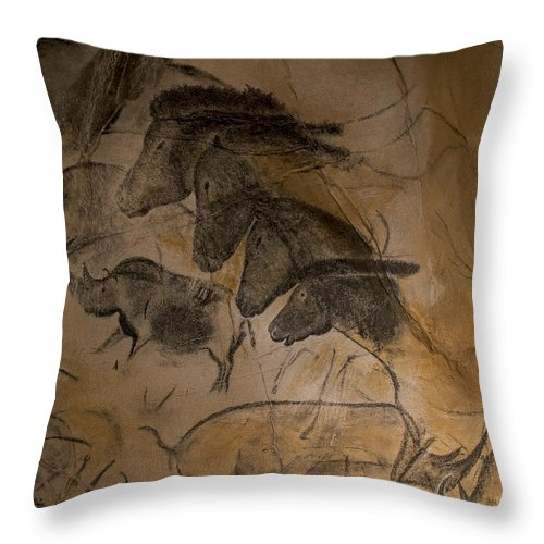 Replica Throw Pillow featuring the photograph 150501p086 by Arterra Picture Library