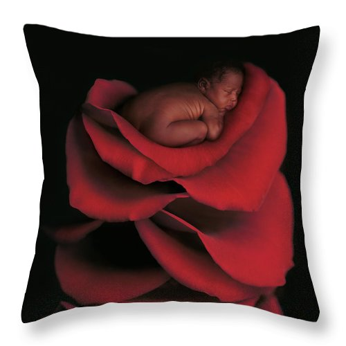 Kwasi On A Bed Of Rose Petals Throw Pillow For Sale By Anne Geddes