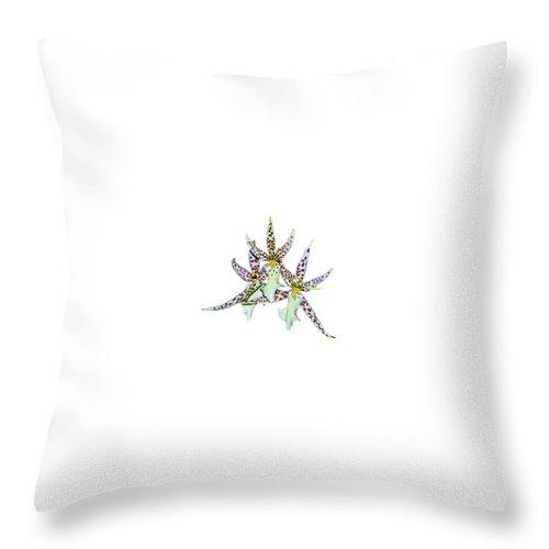 Orquid Throw Pillow featuring the photograph Orquid by Galeria Trompiz